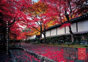 2012_autumn