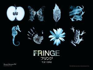 Fringe01