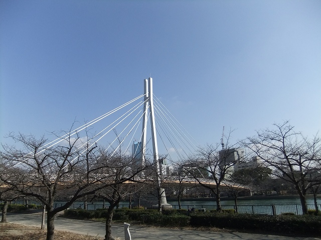 2013010711_009